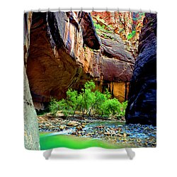 Zion Narrows #2 Shower Curtain