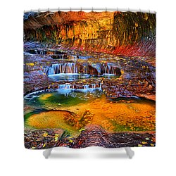 Zion Subway Falls Shower Curtain