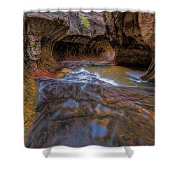 Shower Curtain featuring the photograph Zion Subway by Jonathan Davison