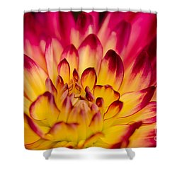 Zoey Rey Shower Curtain