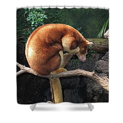 Zoo Animal Shower Curtain