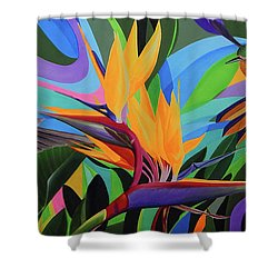 Zumbador Canela Shower Curtain by Angel Ortiz