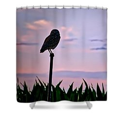 Burrowing Owl On A Stick Shower Curtain