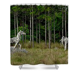Driftwood Horses Shower Curtain