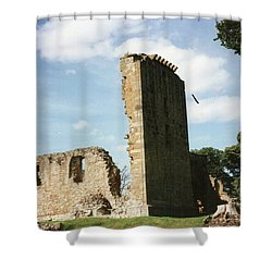 Elgin Cathedral Shower Curtain