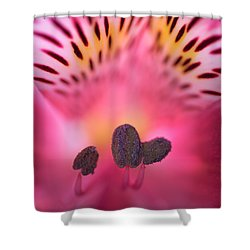 Shower Curtain featuring the photograph Flower Close Up by John Rodrigues