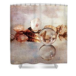 Shower Curtain featuring the photograph Gems From The Beach by Randi Grace Nilsberg