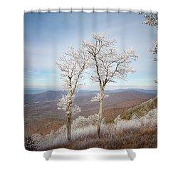 Hoarfrost Gathers Shower Curtain