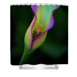 Shower Curtain featuring the photograph Lily  by John Rodrigues