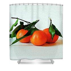 11--01-13 Studio. 3 Clementines Shower Curtain