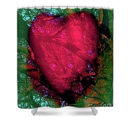 2-16-2009ab Shower Curtain