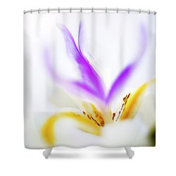 Shower Curtain featuring the photograph White Iris II by John Rodrigues