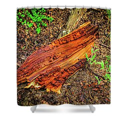 Shower Curtain featuring the photograph Wet Wood by Jon Burch Photography