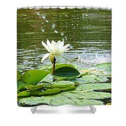 2 White Water Lilies Shower Curtain