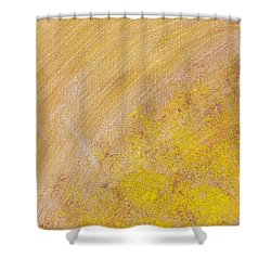 26 Shower Curtain