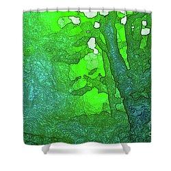 3-16-2009v Shower Curtain