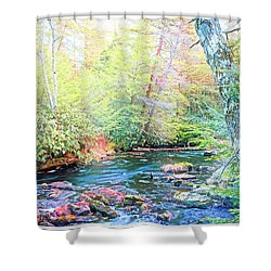 Pocono Mountain Stream, Pennsylvania Shower Curtain