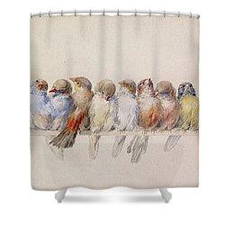 A Perch Of Birds  Shower Curtain