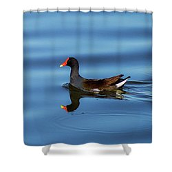 A Day For Reflection Shower Curtain