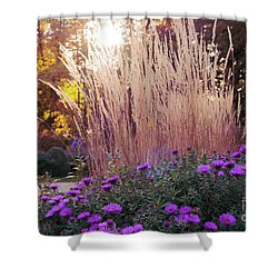 A Flower Bed In The Autumn Park Shower Curtain