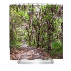 Shower Curtain featuring the photograph A Forest Trail by John M Bailey