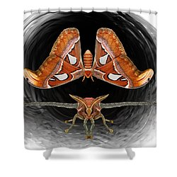 A Is For Atlas Moth Shower Curtain