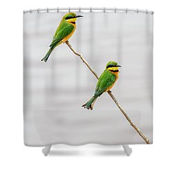 Shower Curtain featuring the photograph A Little Bee Eater Couple by Kay Brewer