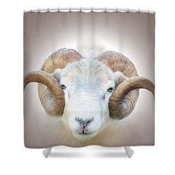 Shower Curtain featuring the digital art A Little Ram  by Valerie Anne Kelly
