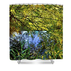Shower Curtain featuring the photograph A Peek At The River by David Patterson