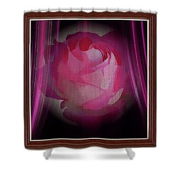 A Purple Rose On Stage Shower Curtain