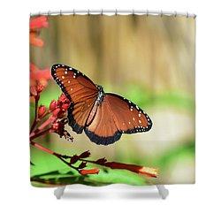 A Queen But Not A Monarch Shower Curtain