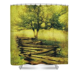 A Shady Tree On A Foggy Day Fx Shower Curtain
