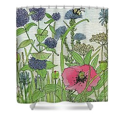 A Single Poppy Wildflowers Garden Flowers Shower Curtain