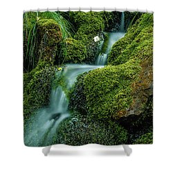 A View From The Side Of The Bow Valley Parkway, Banff National P Shower Curtain
