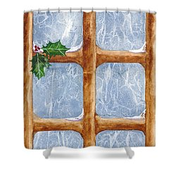 A Visit From Jack Frost Shower Curtain