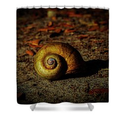 Abandon Home Shower Curtain