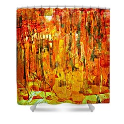 Ablaze Shower Curtain