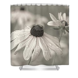 Shower Curtain featuring the photograph Achromatic Adoration by Dale Kincaid