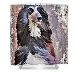 Afghan Hound Shower Curtain