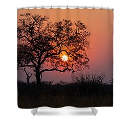 Shower Curtain featuring the photograph Africa Sunset by John Rodrigues