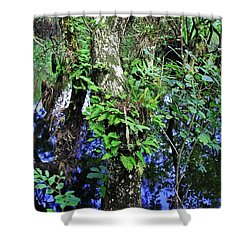 After Forever Ends Shower Curtain