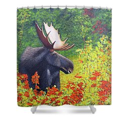 Afternoon Munch Shower Curtain
