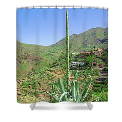 Agave With Flower Spear In Masca Shower Curtain