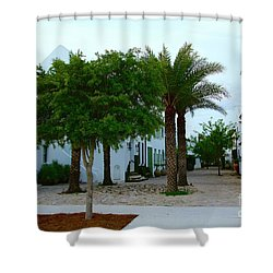 Alys Streetscape 2 Shower Curtain
