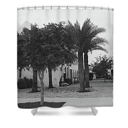 Alys Streetscape Shower Curtain