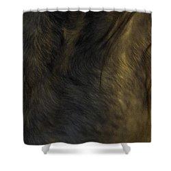 Americano 20 Shower Curtain