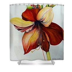 Amerylis/amaryllis  Shower Curtain