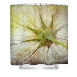 Ancient Flower Shower Curtain