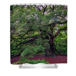 Shower Curtain featuring the photograph Angel Oak Tree by Rick Berk