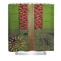 Another Fragment Of The Frontier Of Beauty Shower Curtain
